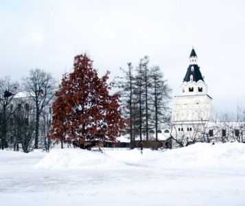 2013-02-06 Activity Iosifo-volotsk-monastery Pilgrimage Web 001