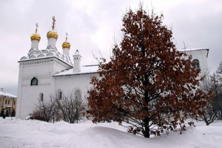 2013-02-06 Activity Iosifo-volotsk-monastery Pilgrimage Web 014