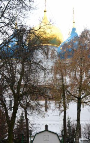 2014-11-15 Activity St-sergius-lavra Pilgrimage Web 023
