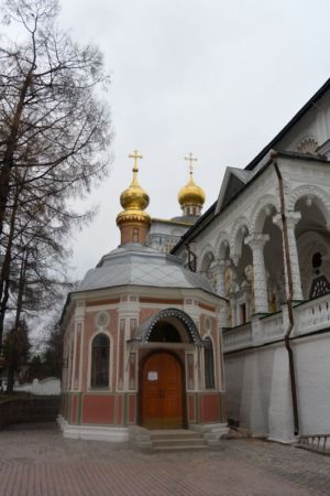 2014-11-15 Activity St-sergius-lavra Pilgrimage Web 031