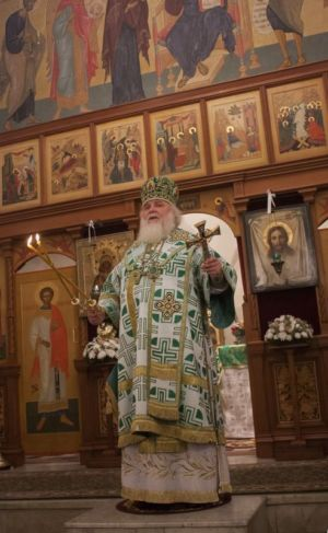 2015-10-11 Service Mitr-arseny-of-istra Liturgy Photo-gureev Web 014