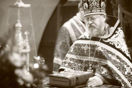 2015-10-11 Service Mitr-arseny-of-istra Liturgy Photo-nikitin Web 022