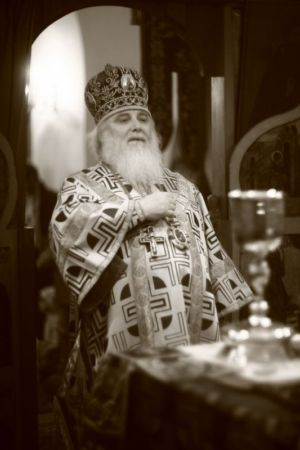 2015-10-11 Service Mitr-arseny-of-istra Liturgy Photo-nikitin Web 050