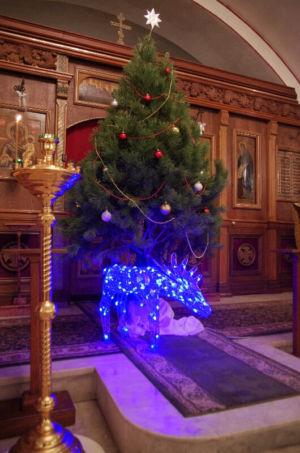 2016-01-07 Christmas Web 045
